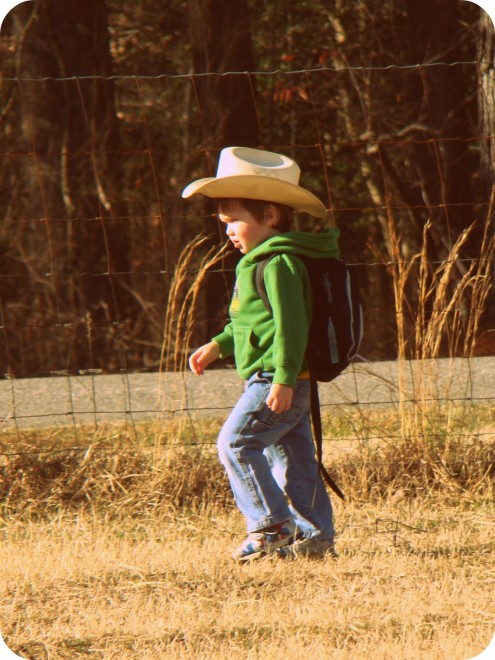 Muckety Muck Muck In The Barnyard 187 Walking In High Cotton