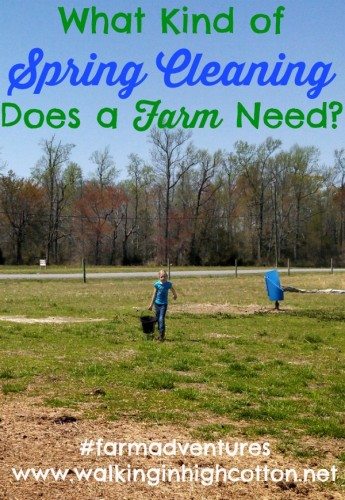 What kind of SPRING CLEANING does a FARM need? {via www.walkinginhighcotton.net} #farmadventure #cleaning #organizing #homestead