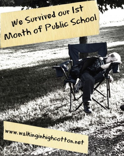 We survived our 1st month of public school...but it was bumpy, my friends. Very bumpy.