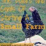 The Dollars and Cents of Starting a Small Farm